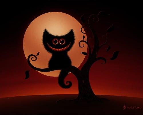 A Cheshire Kitten (Halloween Night)