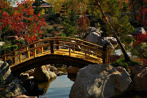 Relaxing your mind 30 awe inspiring photos of japanese for Koi garden rio di pusteria