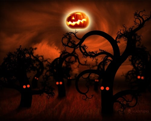Halloween In The Midnight Forest