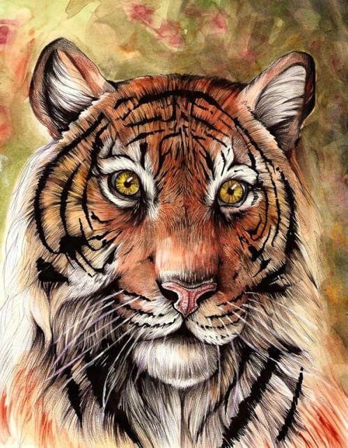 Traditional Tiger 3