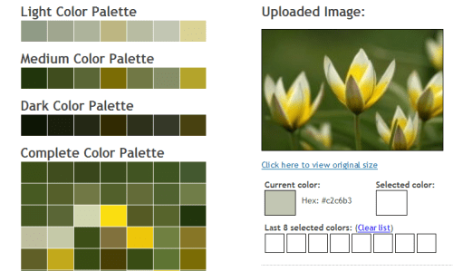 cssdrive-image-to-colors-palette-generator