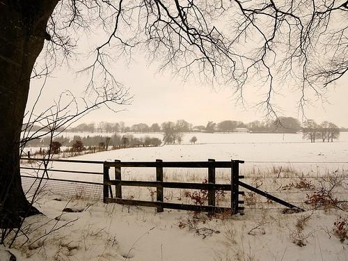 Winter landscape near Dummer