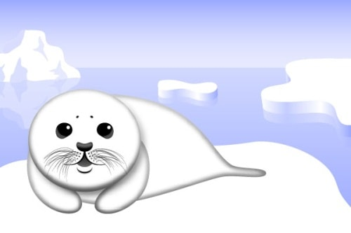 Create a Cute Baby Seal with Illustrator
