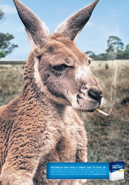 Nicabate Pre-Quit: Roo